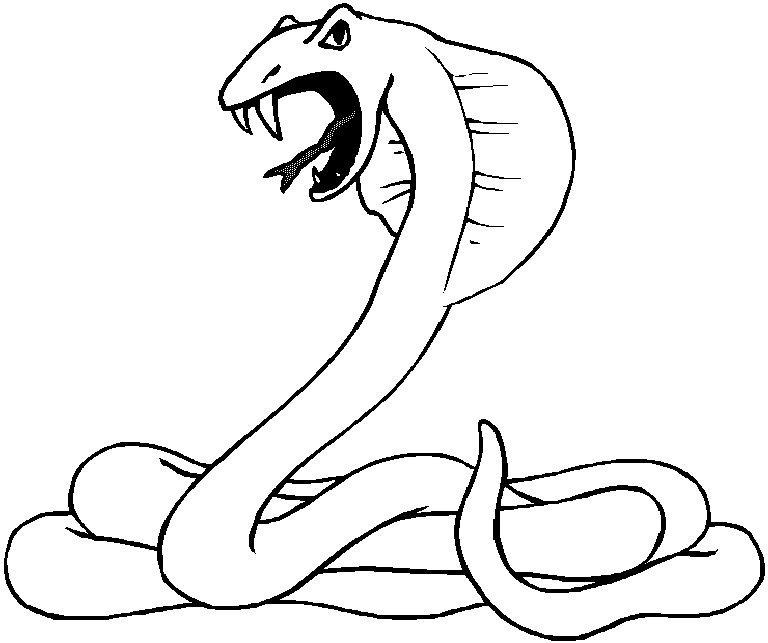 It is a picture of Irresistible Snake Coloring Pages Printable