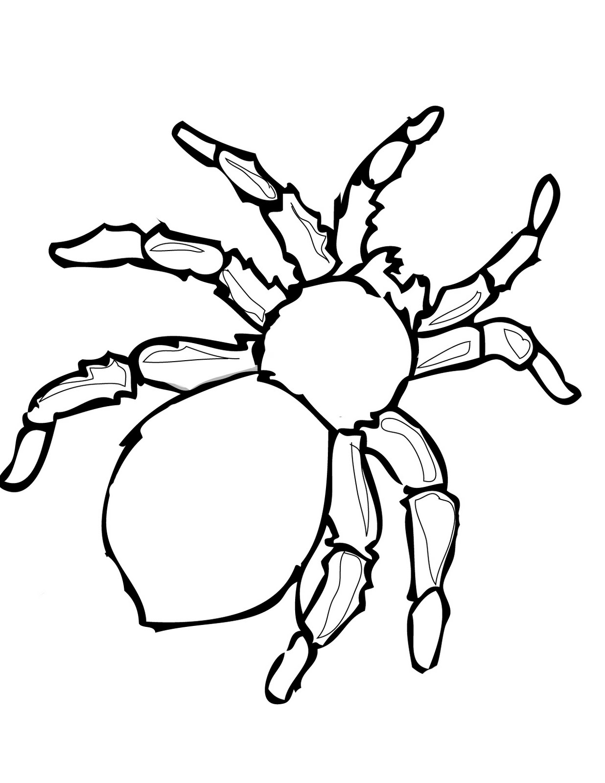 free printable coloring pages for children - free printable spider coloring pages for kids