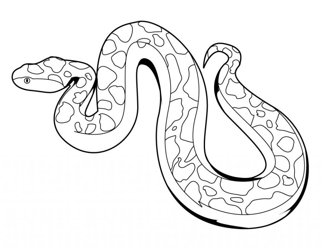 snake outline coloring pages - photo#6
