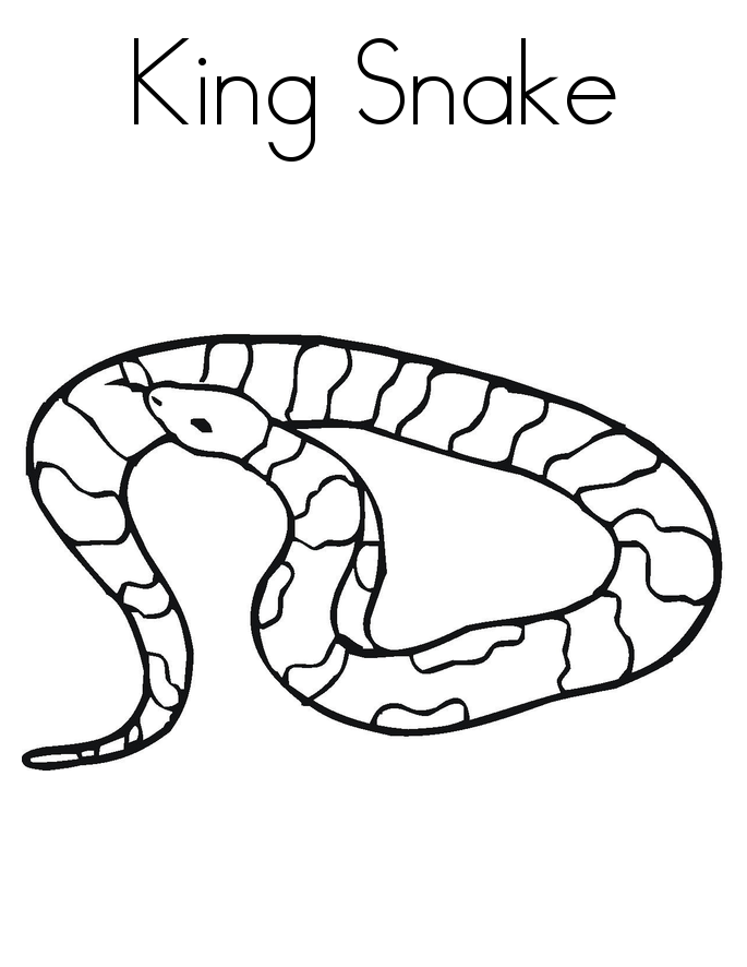 Snake Coloring Pages To Print