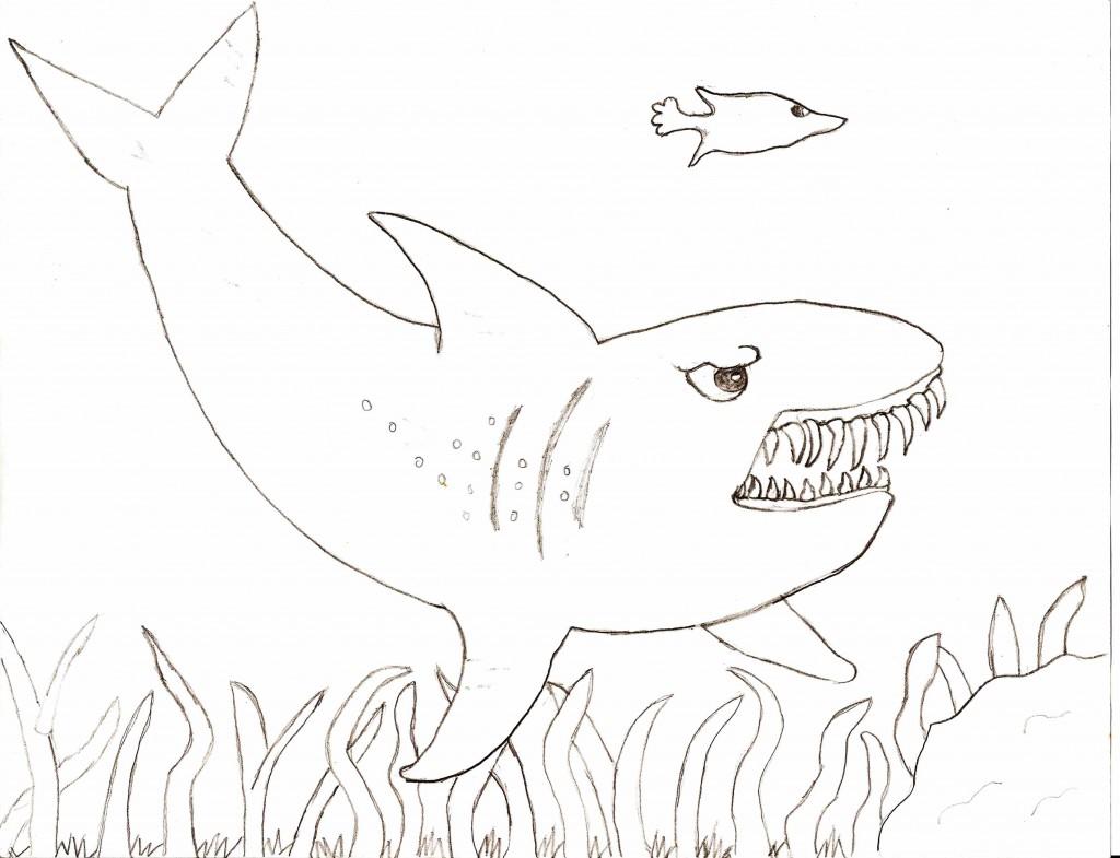 Tiger Shark Coloring Page