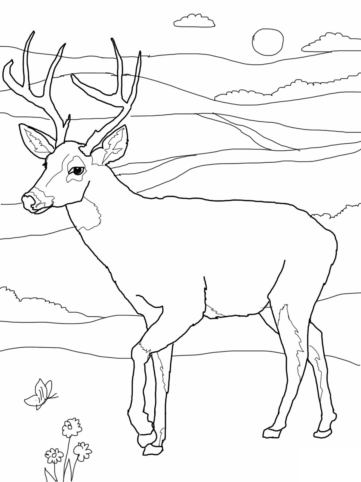Christmas Reindeer Face coloring page | Free Printable Coloring Pages | 1600x1200