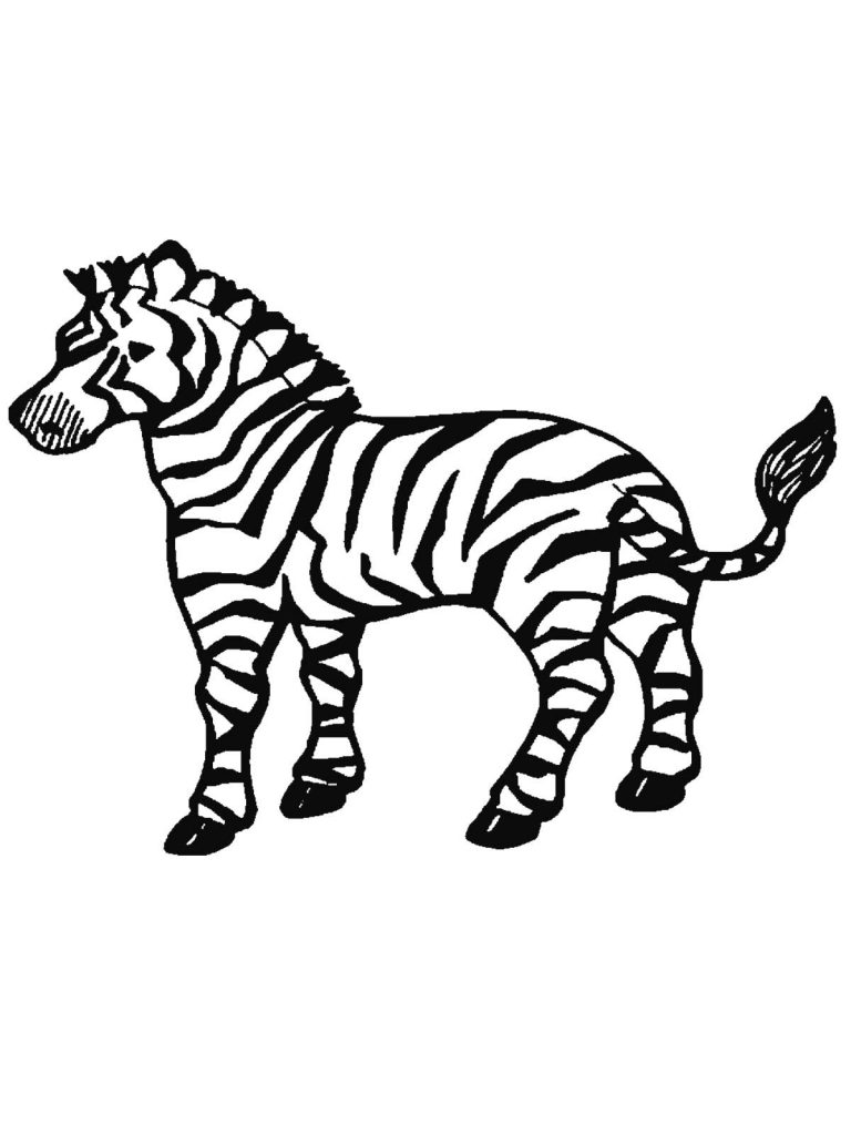 Free Printable Zebra Coloring Pages