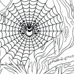 Spider and Web Coloring Page