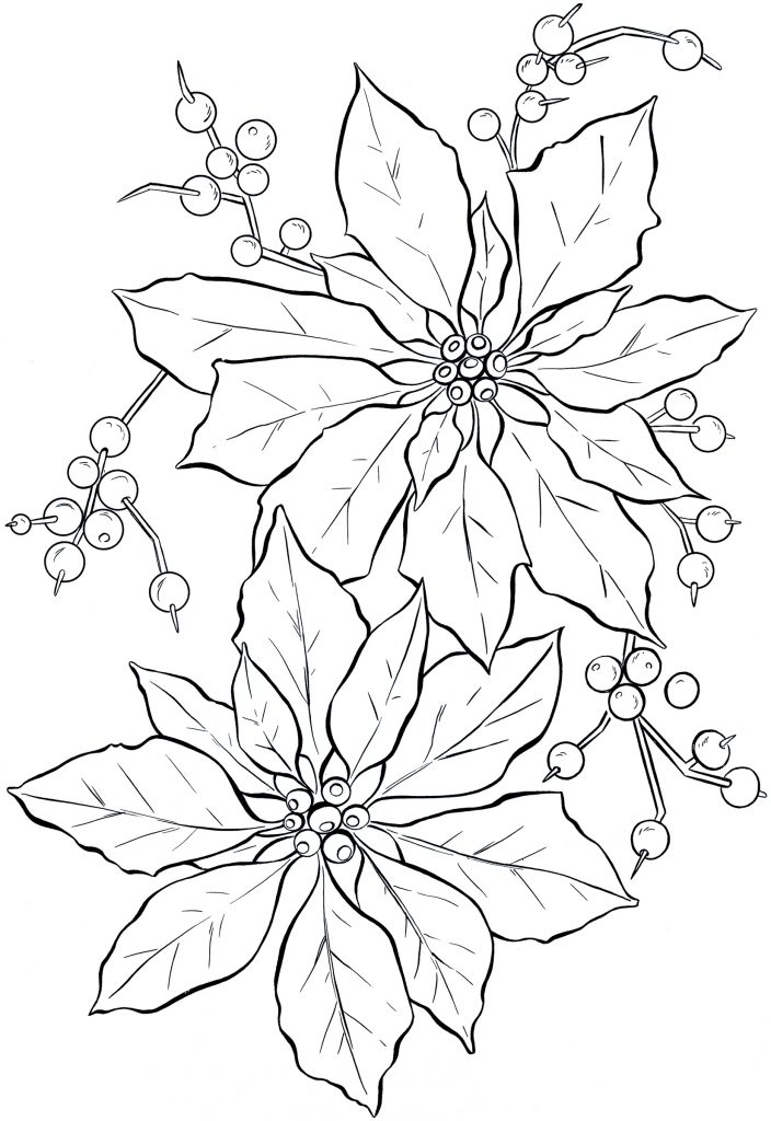 Coloring Page of Poinsettia