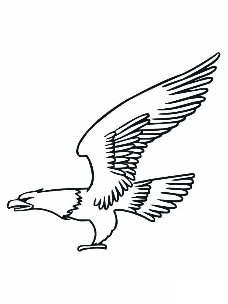 Free Coloring Pages of Bald Eagle