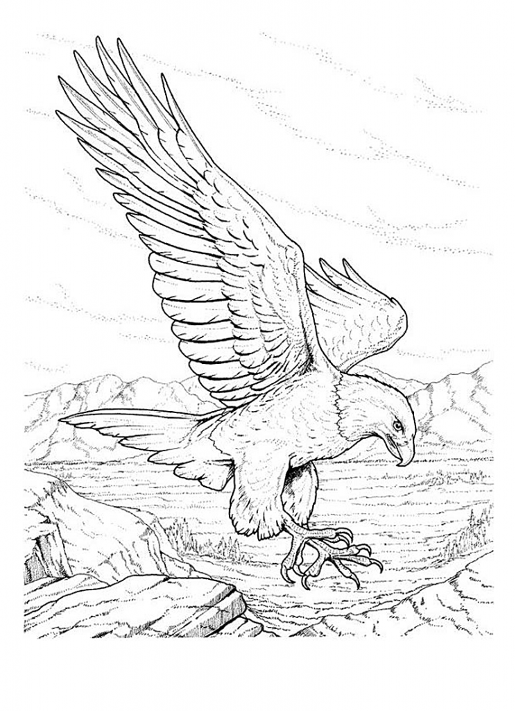 Eagle Flag Coloring Pages
