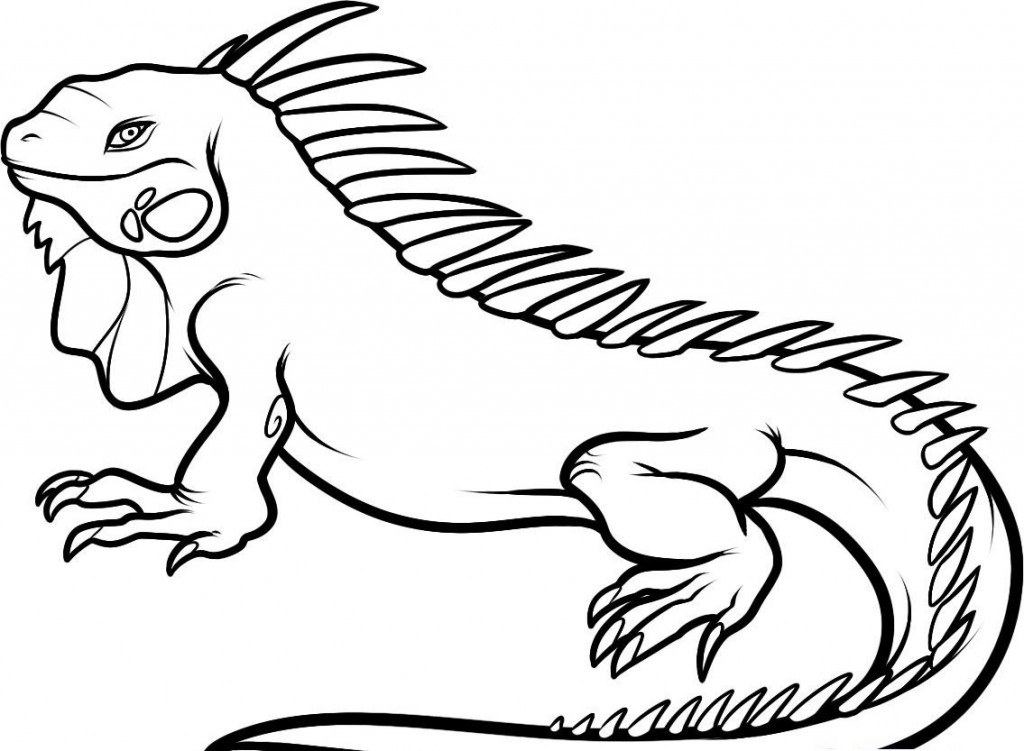 Dibujos De Reptiles Para Colorear E Imprimir: Free Printable Iguana Coloring Pages For Kids