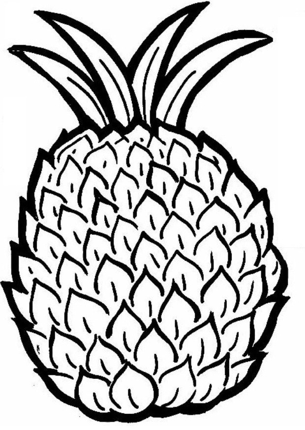Pineapple Coloring Pages on Printable Coloring Page Sheets