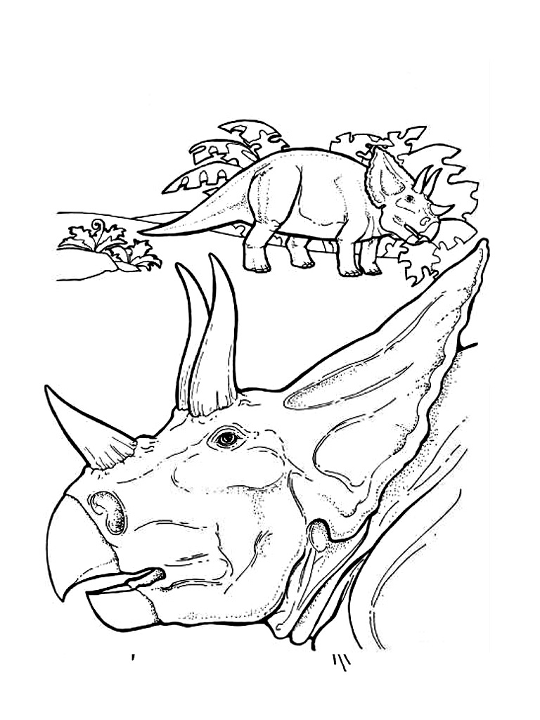 Triceratops Coloring Pages For Kids