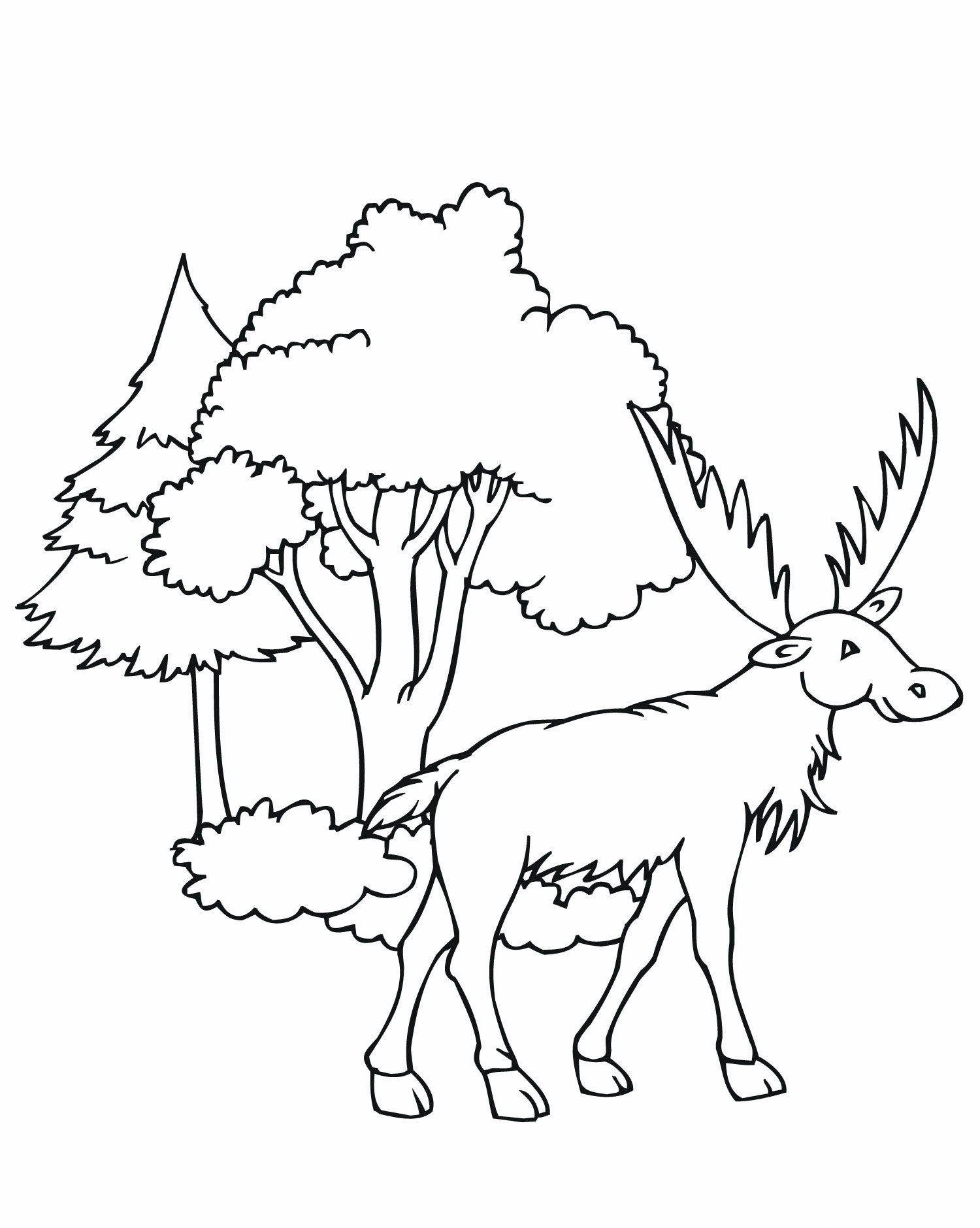 Simple Elk Coloring Pages