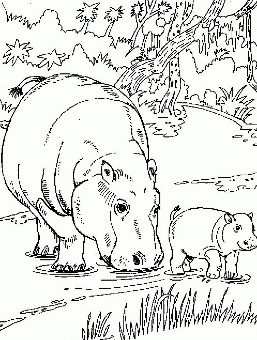 Free printable hippo coloring pages for kids for Baby hippo coloring pages