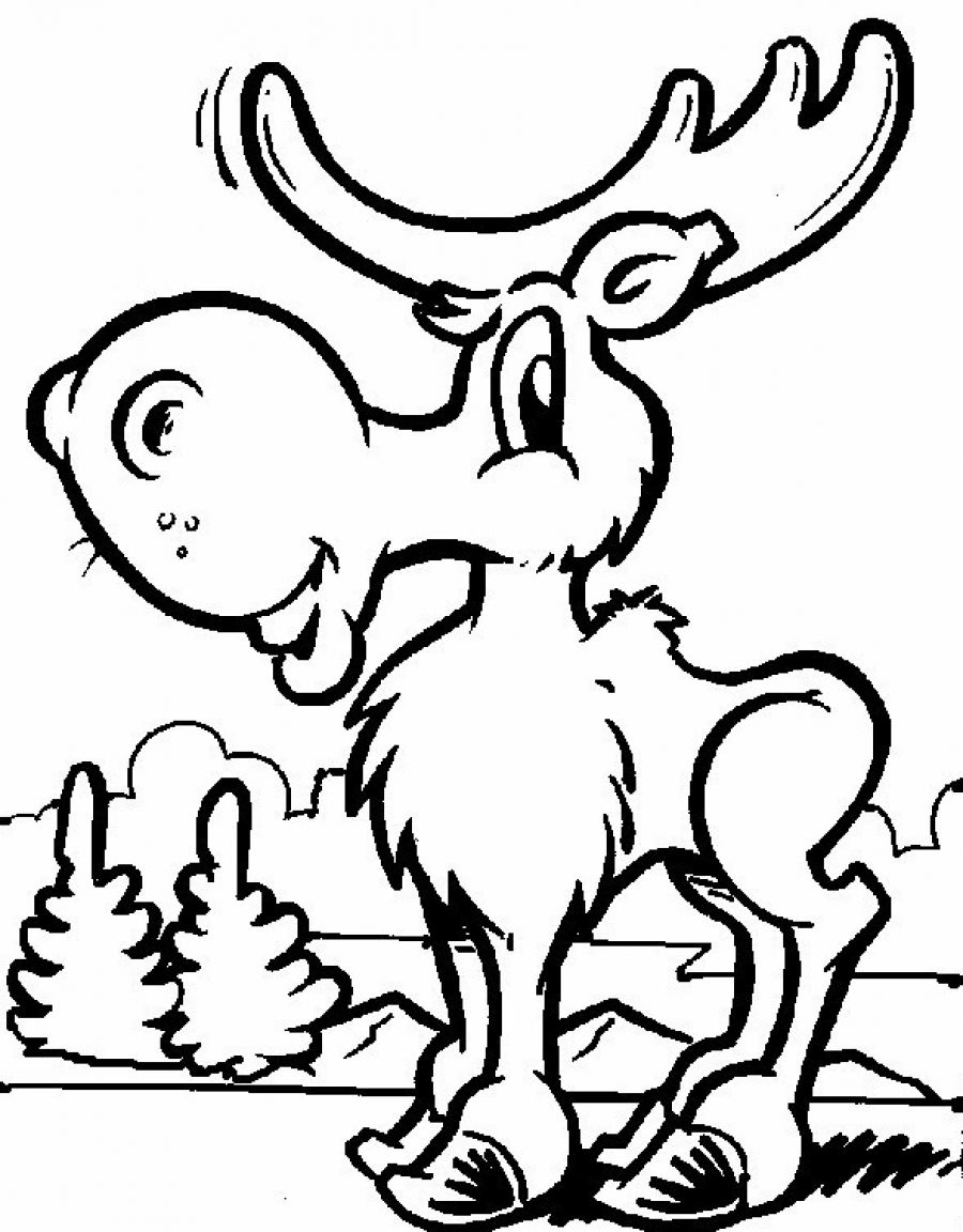 Free printable moose coloring pages for kids for Coloring pages