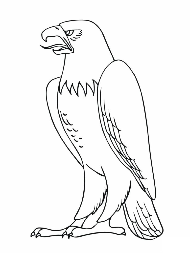 Coloring Pages of Eagle
