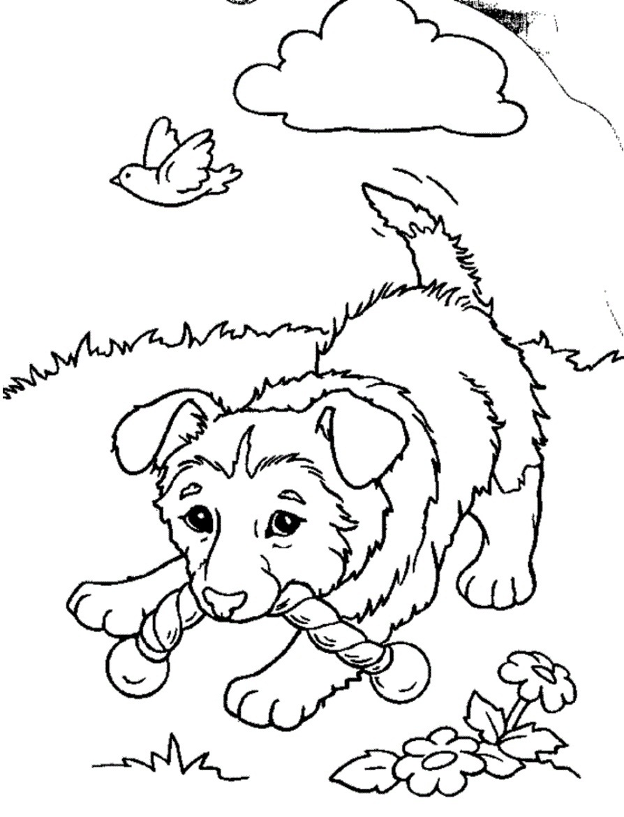Free Printable Puppies Coloring