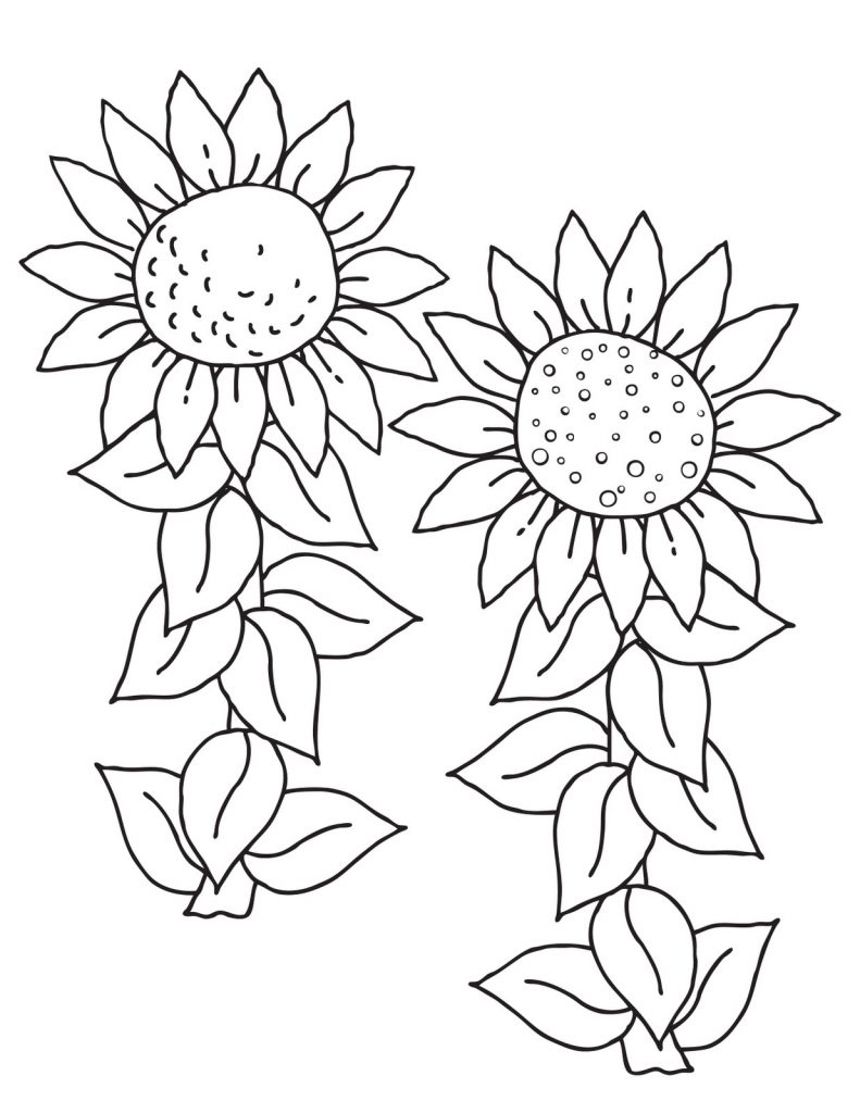 sunflower coloring pages craft - photo#32