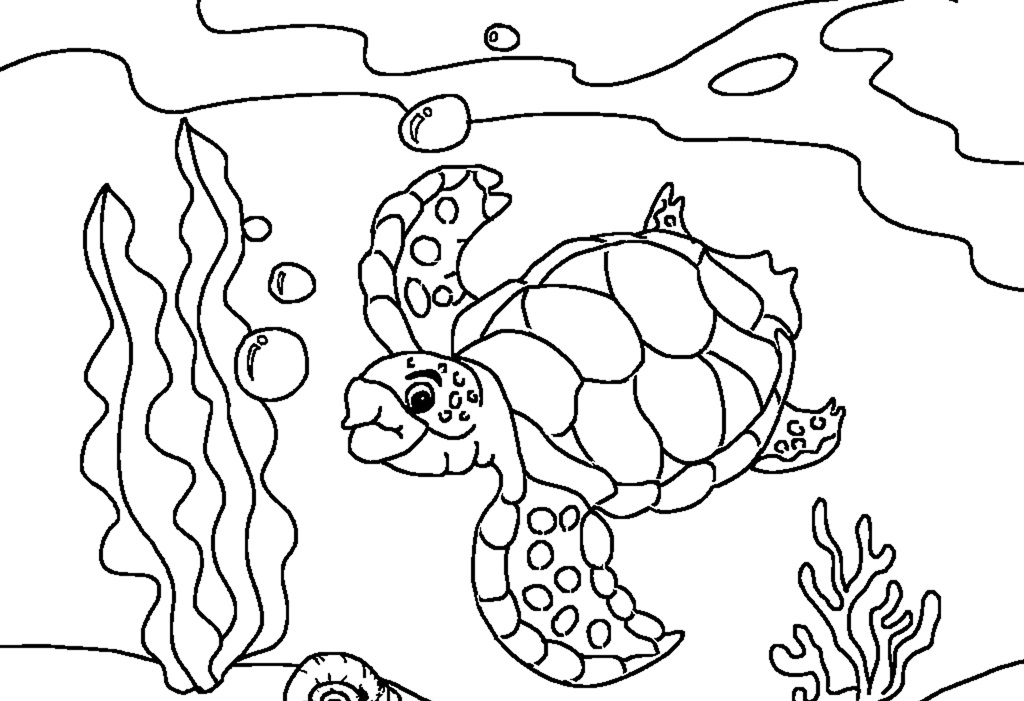Free Printable Sea Turtle Coloring