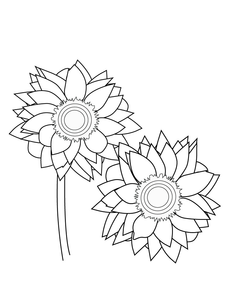 Free Printable Sunflower Coloring