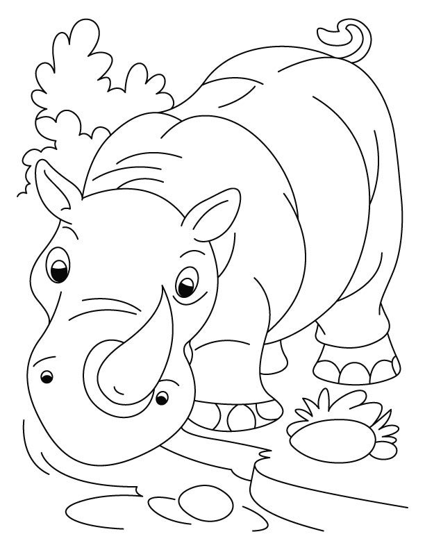 Coloring Pages of Rhinoceros