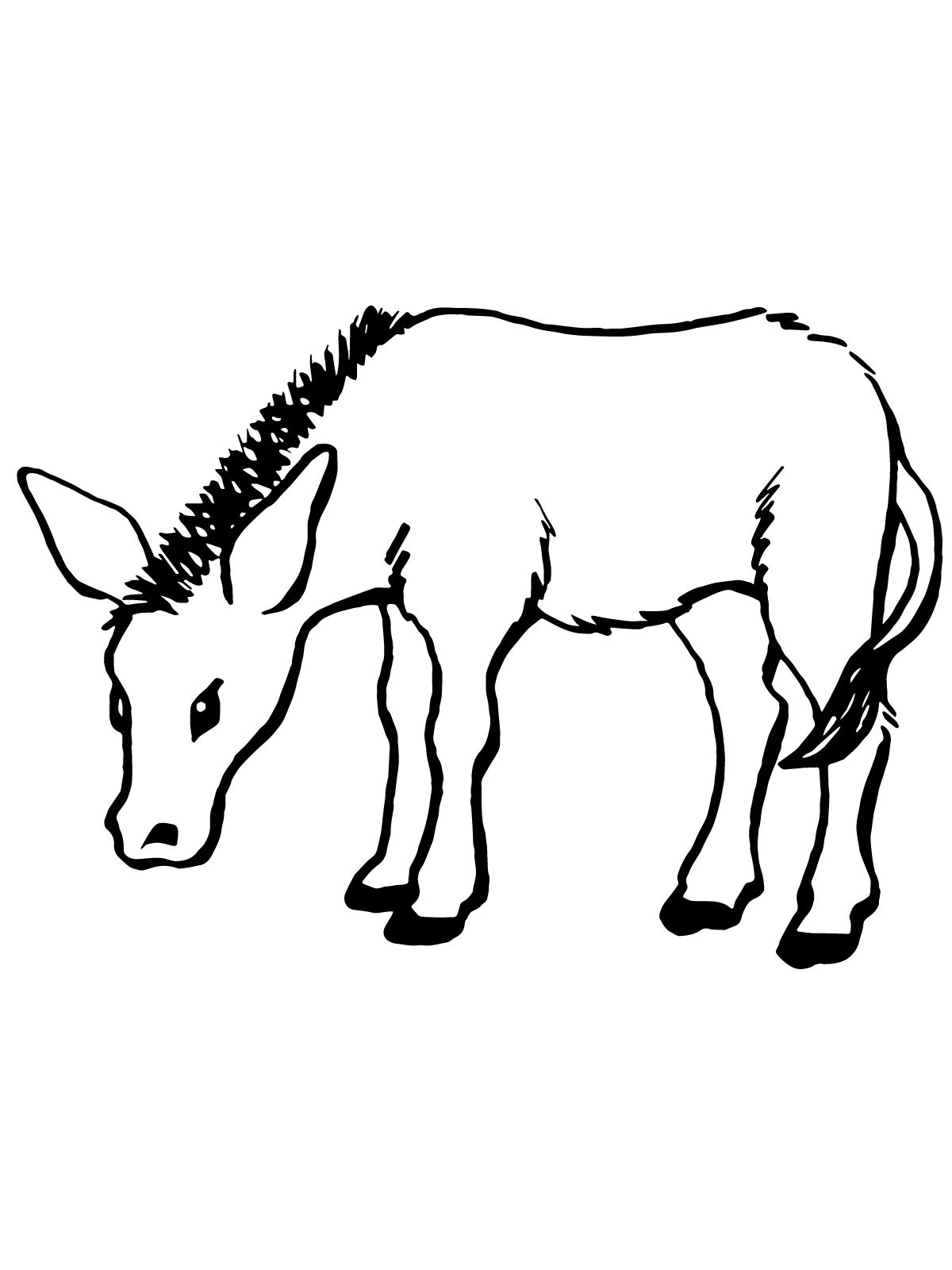 free online coloring pages to print | Free Printable Donkey Coloring Pages For Kids