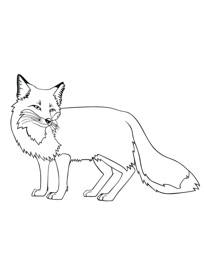 Superb image with regard to printable fox coloring pages
