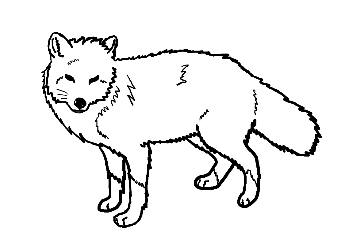 Printable Line Drawings Of Animals : Free printable fox coloring pages for kids