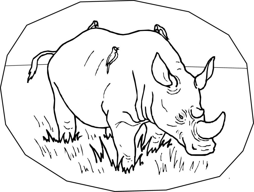 Free Printable Rhinoceros Coloring Pages