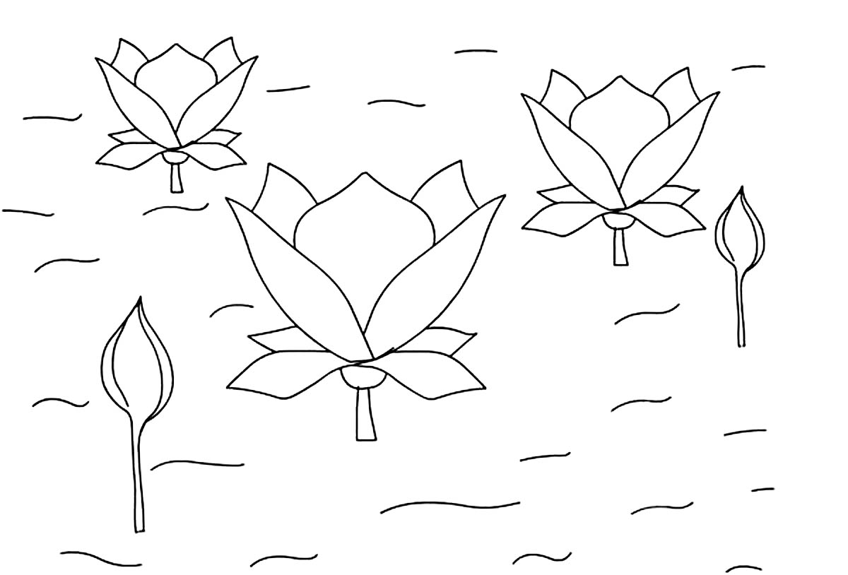 Free Printable Lotus Coloring Pages For Kids