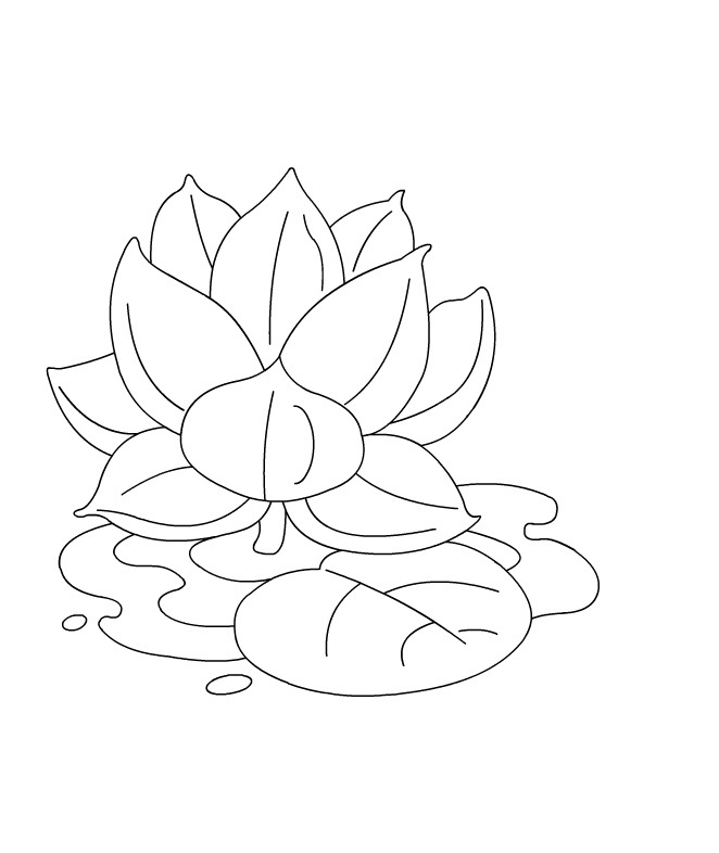 Lotus Flower Coloring Pages for Kids