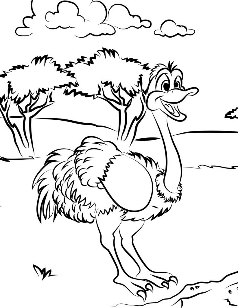 Ostrich Coloring Page
