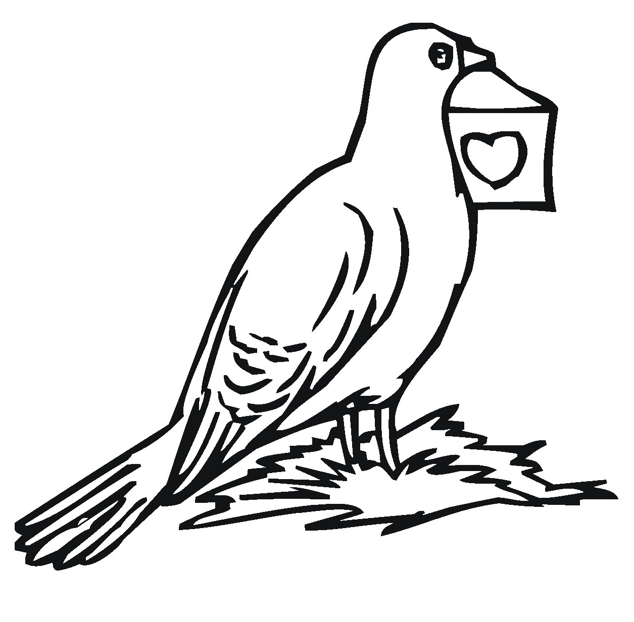 Pigeon Coloring Pages To Print