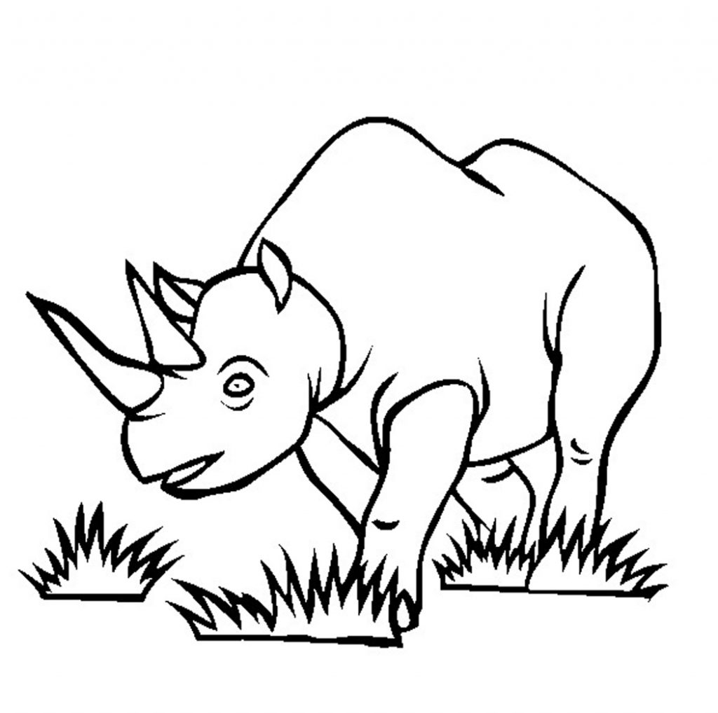 Rhinoceros Coloring Pages for Kids