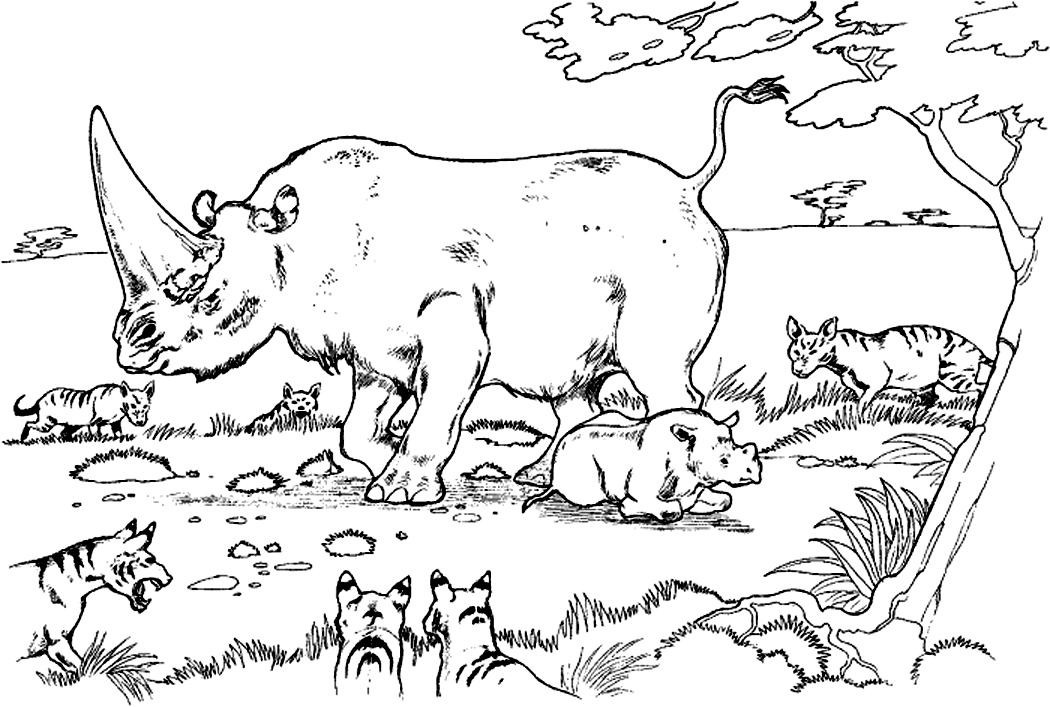 Free Printable Rhinoceros Coloring