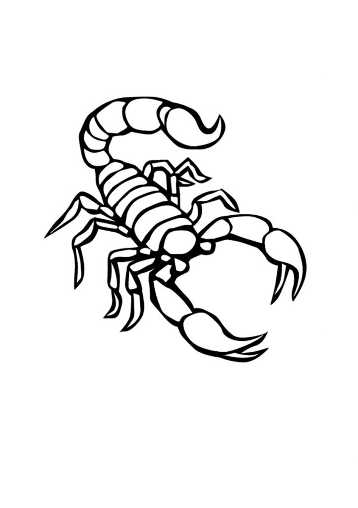 Free Printable Scorpion Coloring