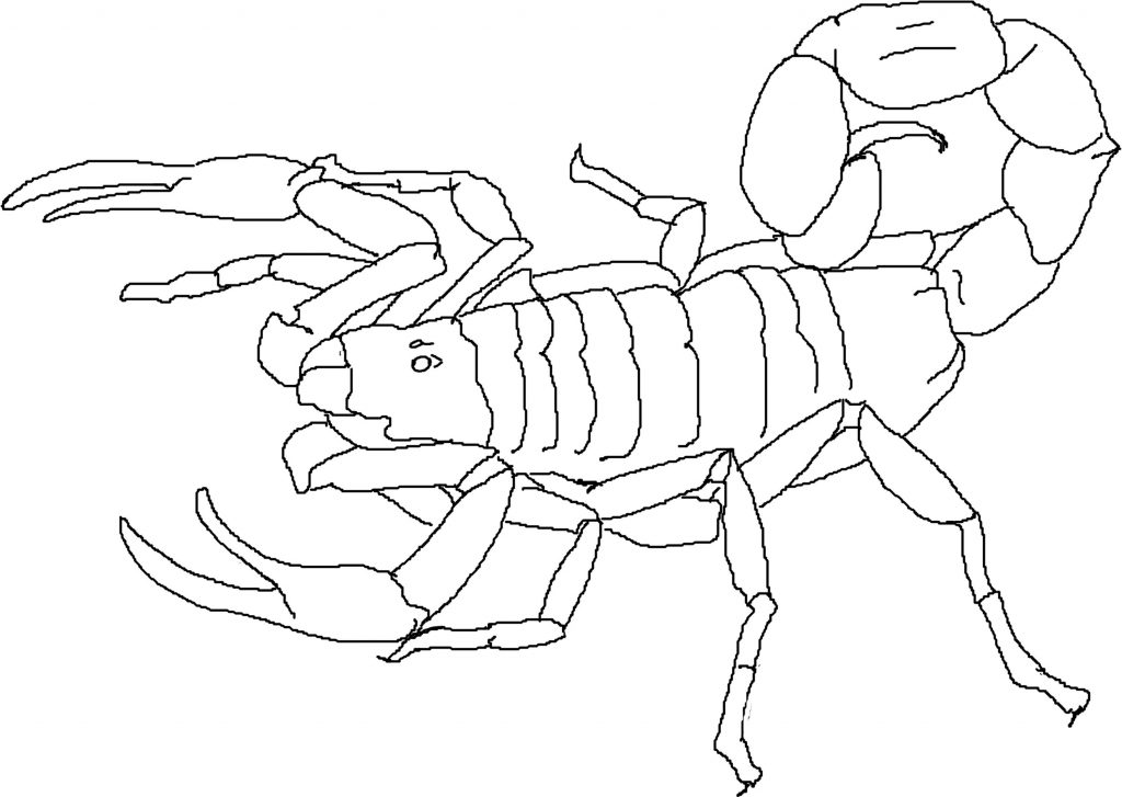 Scorpion Coloring Pages Printable