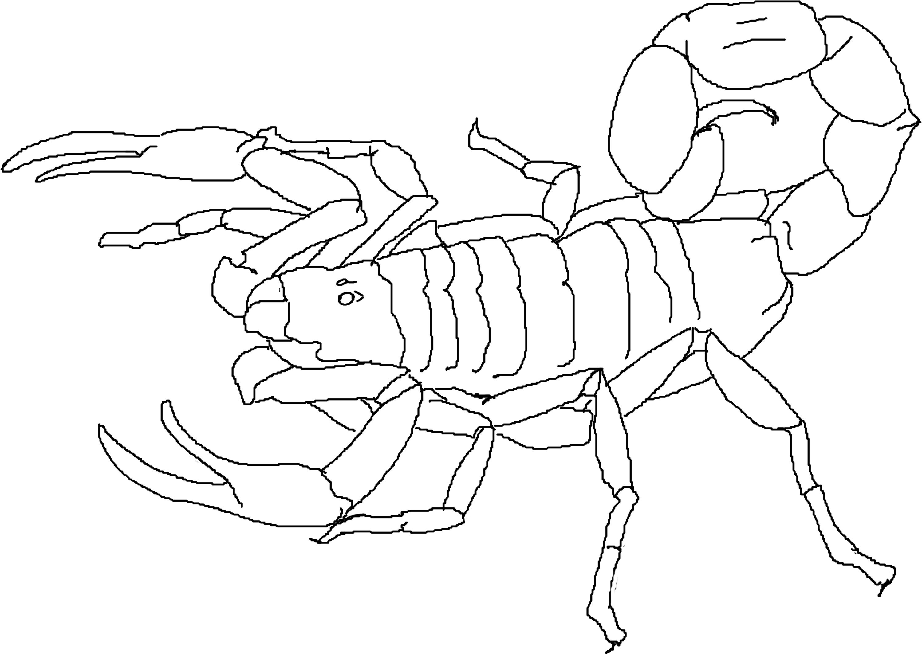 Coloring: Free Printable Scorpion Coloring Pages For Kids