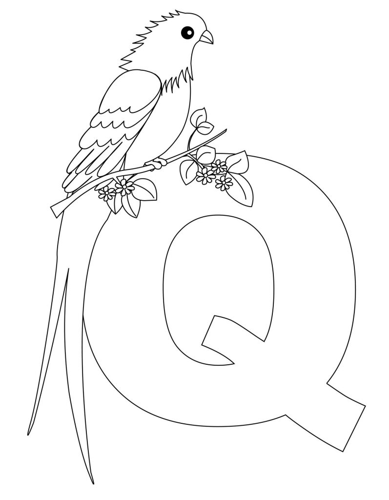 alphabet coloring pages - Letter Q