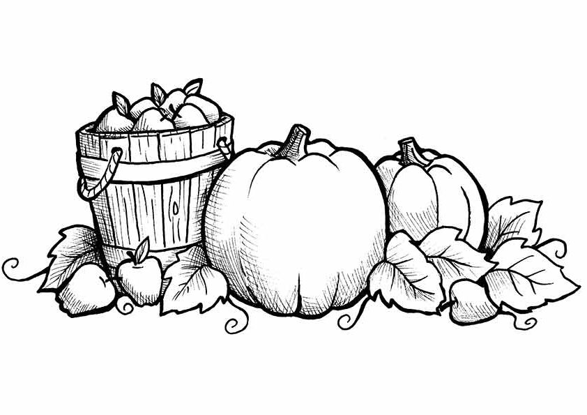 Free printable fall coloring pages for kids best for Pumpkin leaves coloring pages