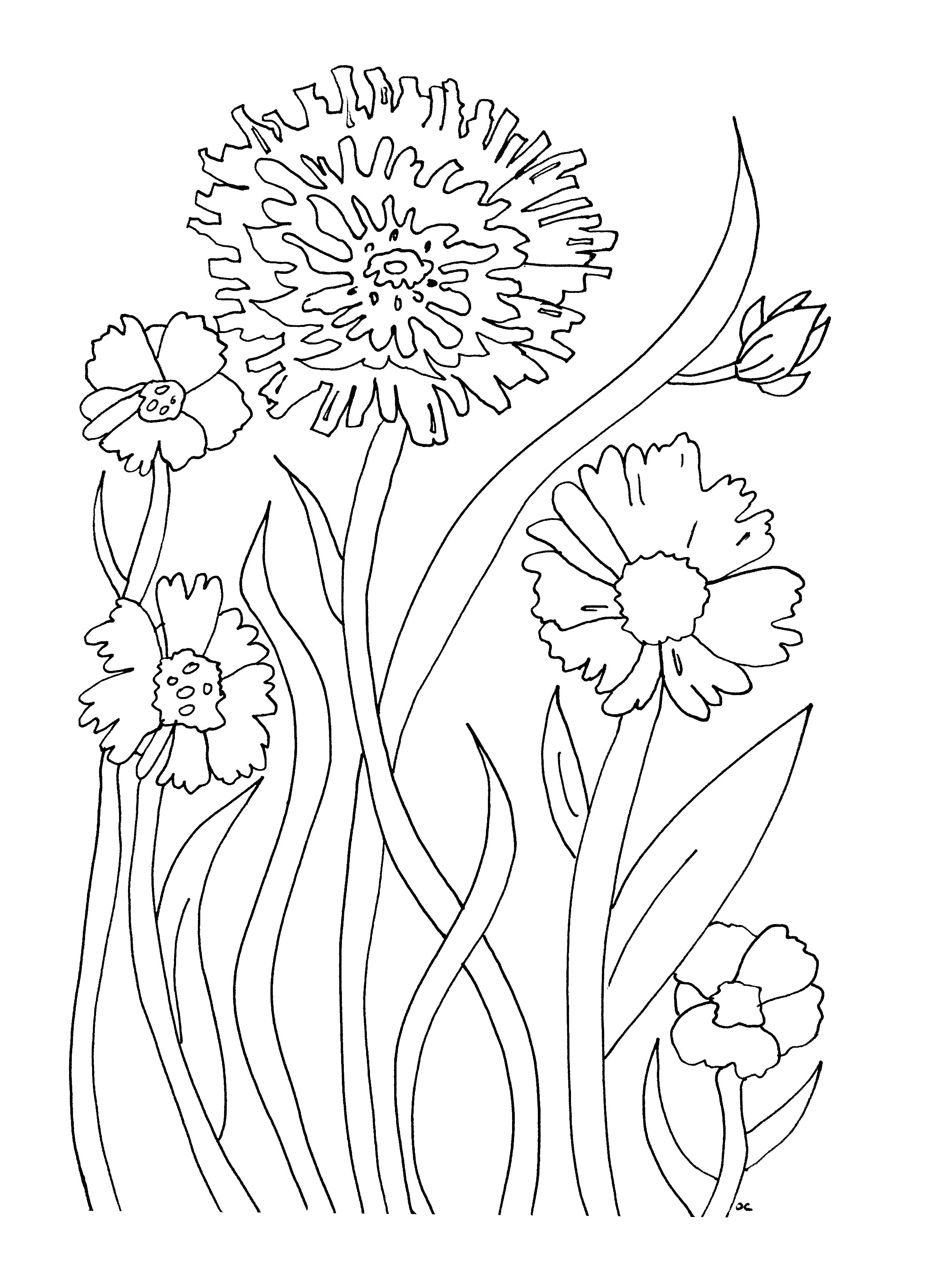 Download Printable Flowers To Color