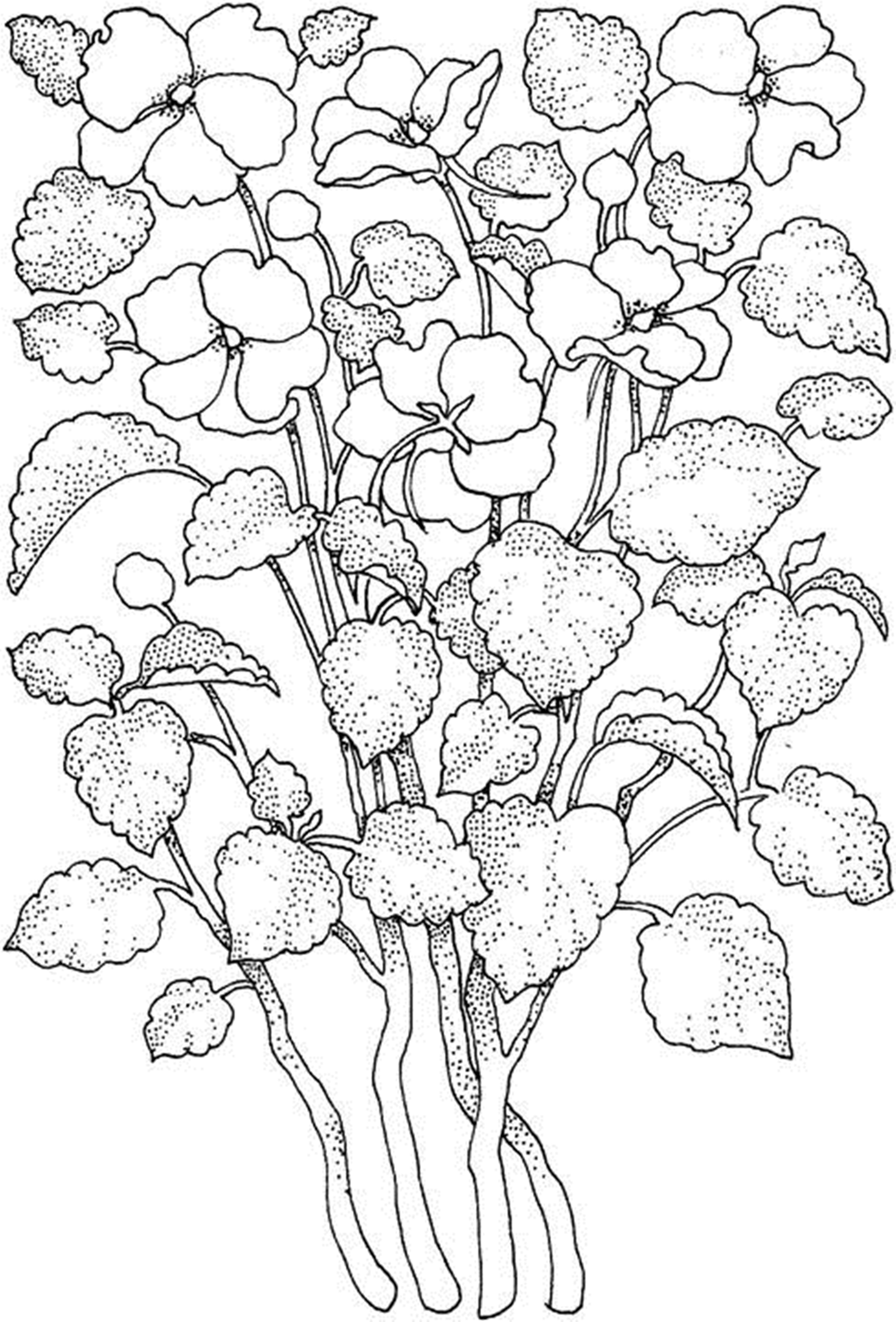 It is an image of Tactueux Printable Flowers Coloring Pages