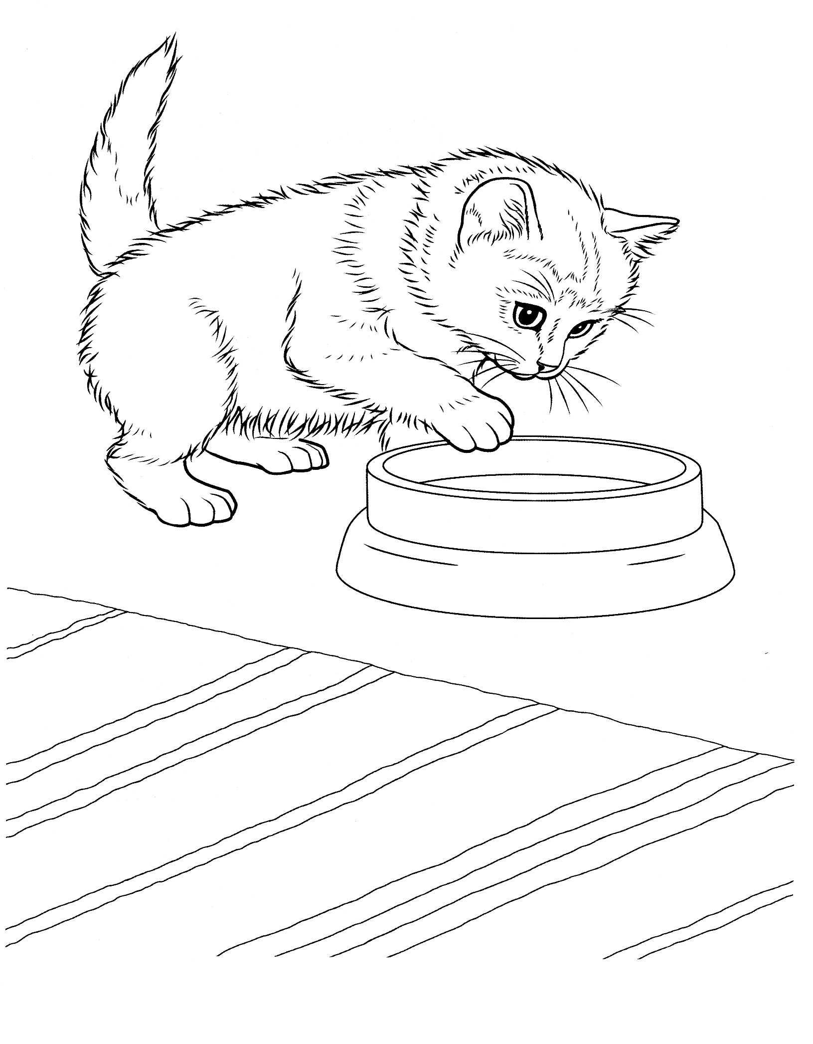It's just an image of Sweet Kitten Coloring Pages Printable