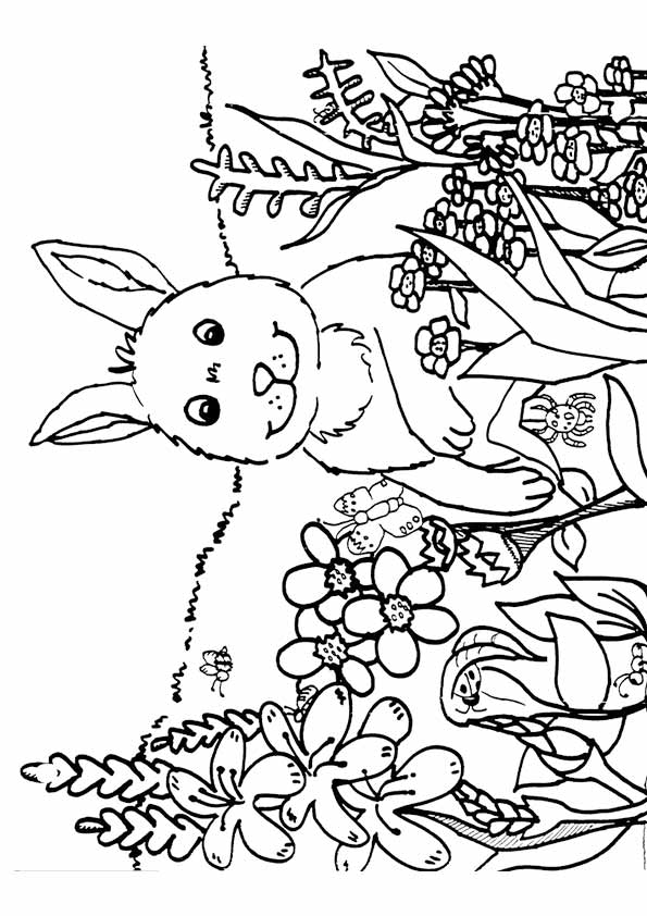Adorable image regarding free printable spring coloring pages