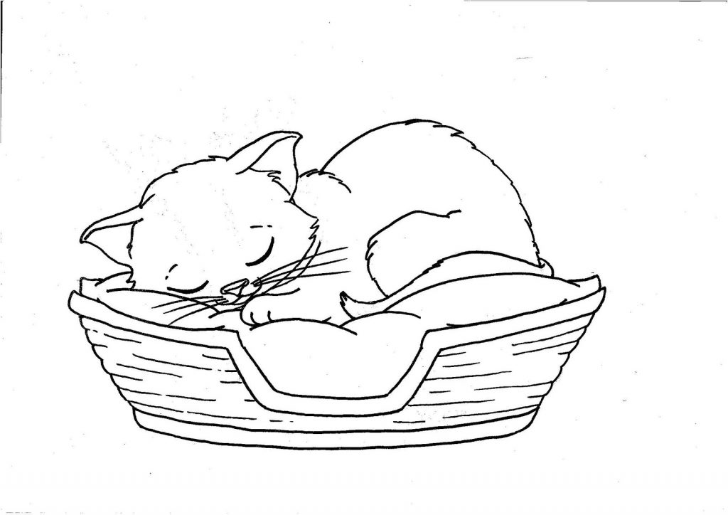Free Sleeping Kitten Coloring Pages