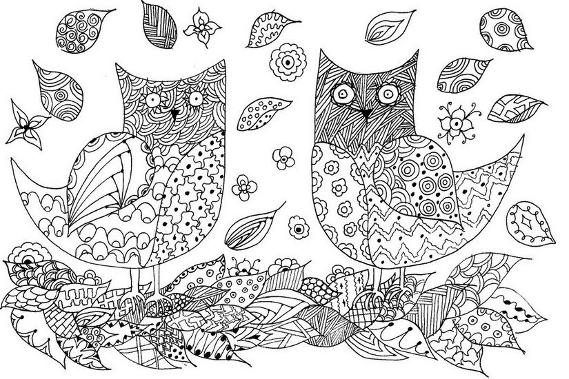 Animal Coloring Pages for Adults - Owls