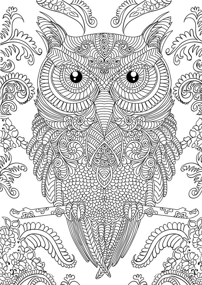 Advanced Adult Owl Coloring Pages