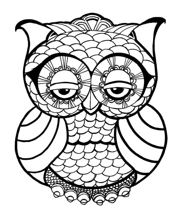 It's just a picture of Dashing Coloring Pictures Of Owls