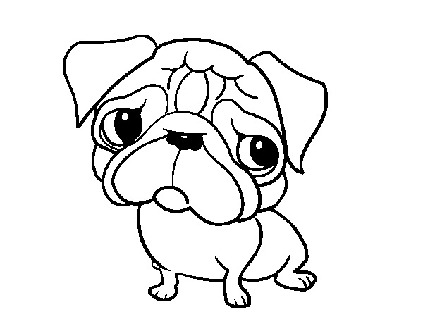 Pug Coloring Pages Best Coloring