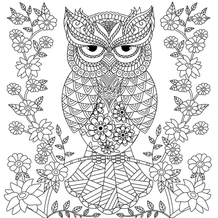 unique owl coloring pages for adults