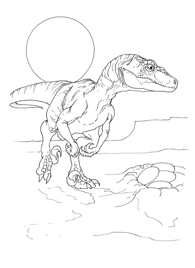 velociraptor coloring pages for kids - photo#10