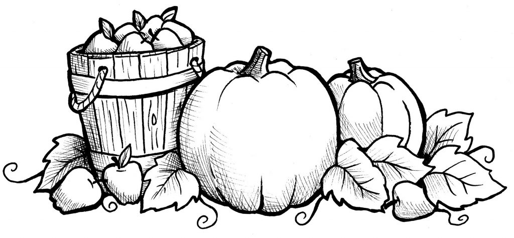 Pretty Fall Harvest Coloring Pages for Adults
